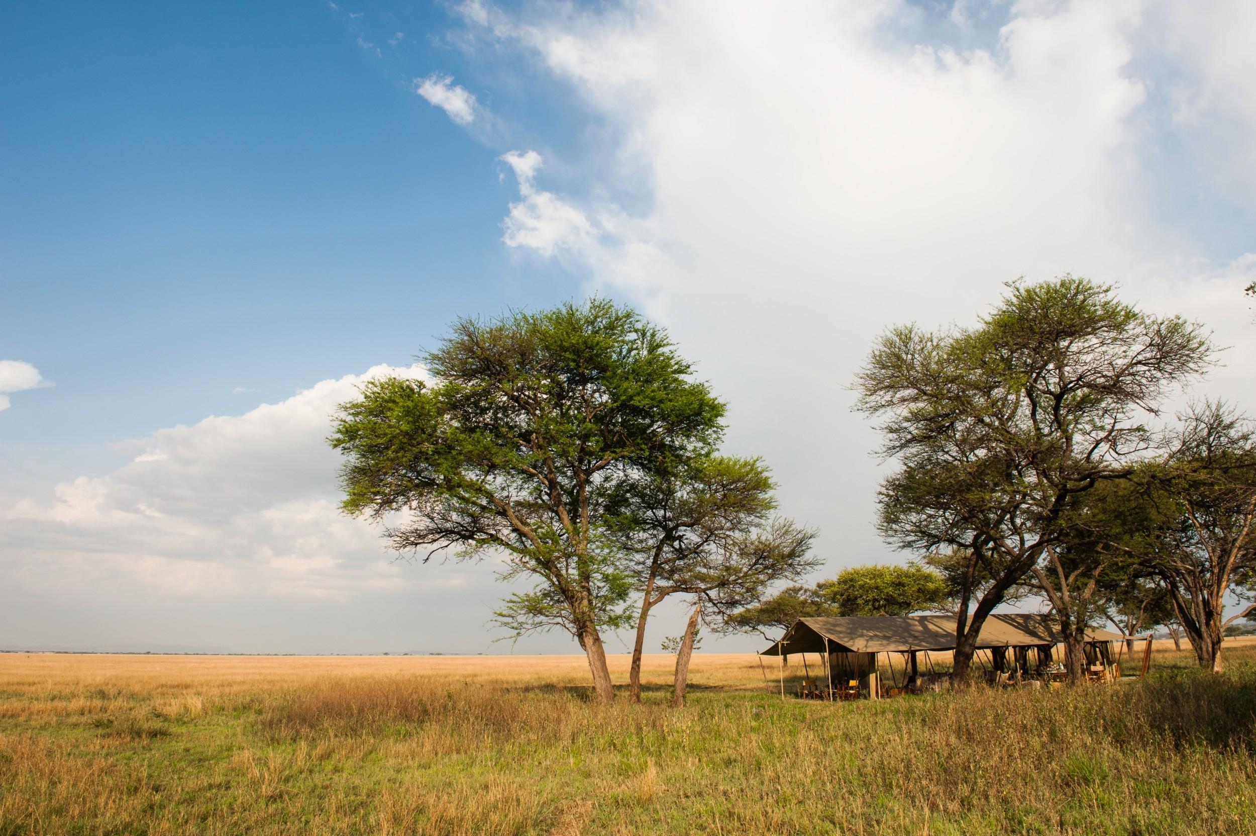 SerengetiSafariCamp11.jpg