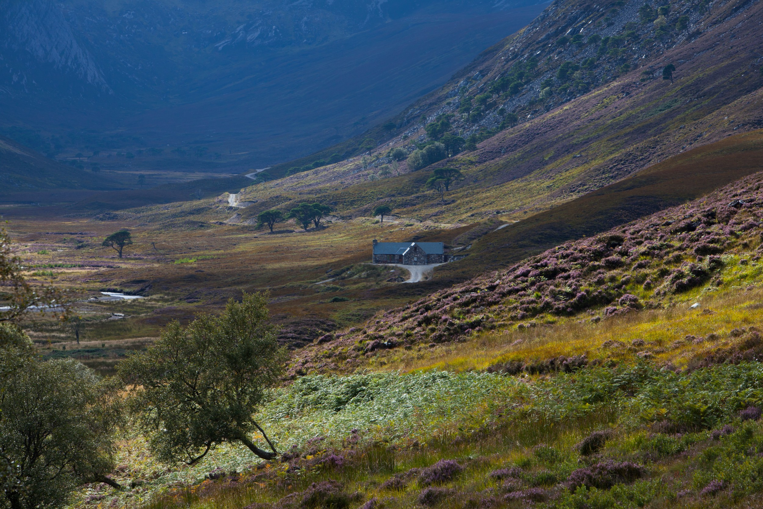 Cottage Eagle's Crag_Alladale Wilderness Reserve_Max MilliganPrint-60.jpg