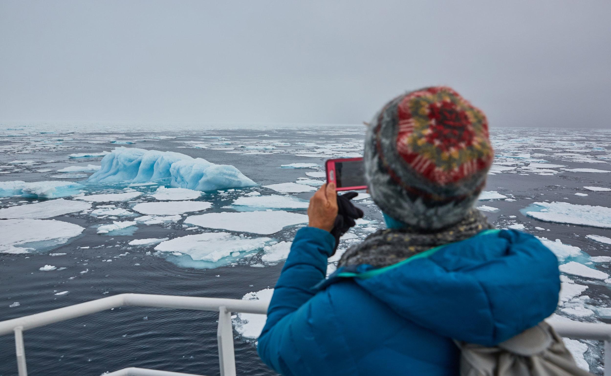 North-Spitsbergen-Polar-Bear-Special,-June-©-Markus-Eichenberger-Oceanwide-Expeditions-(19).jpg_Markus-Eichenberger.jpg