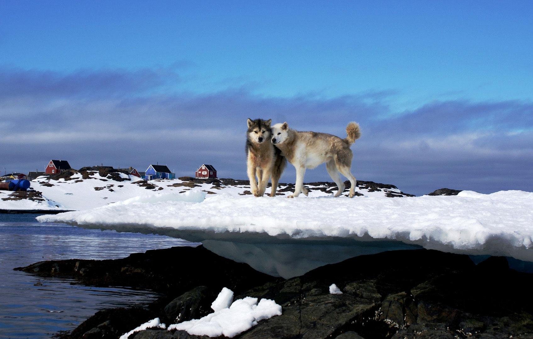 Greenland_Franz-Stix.jpg
