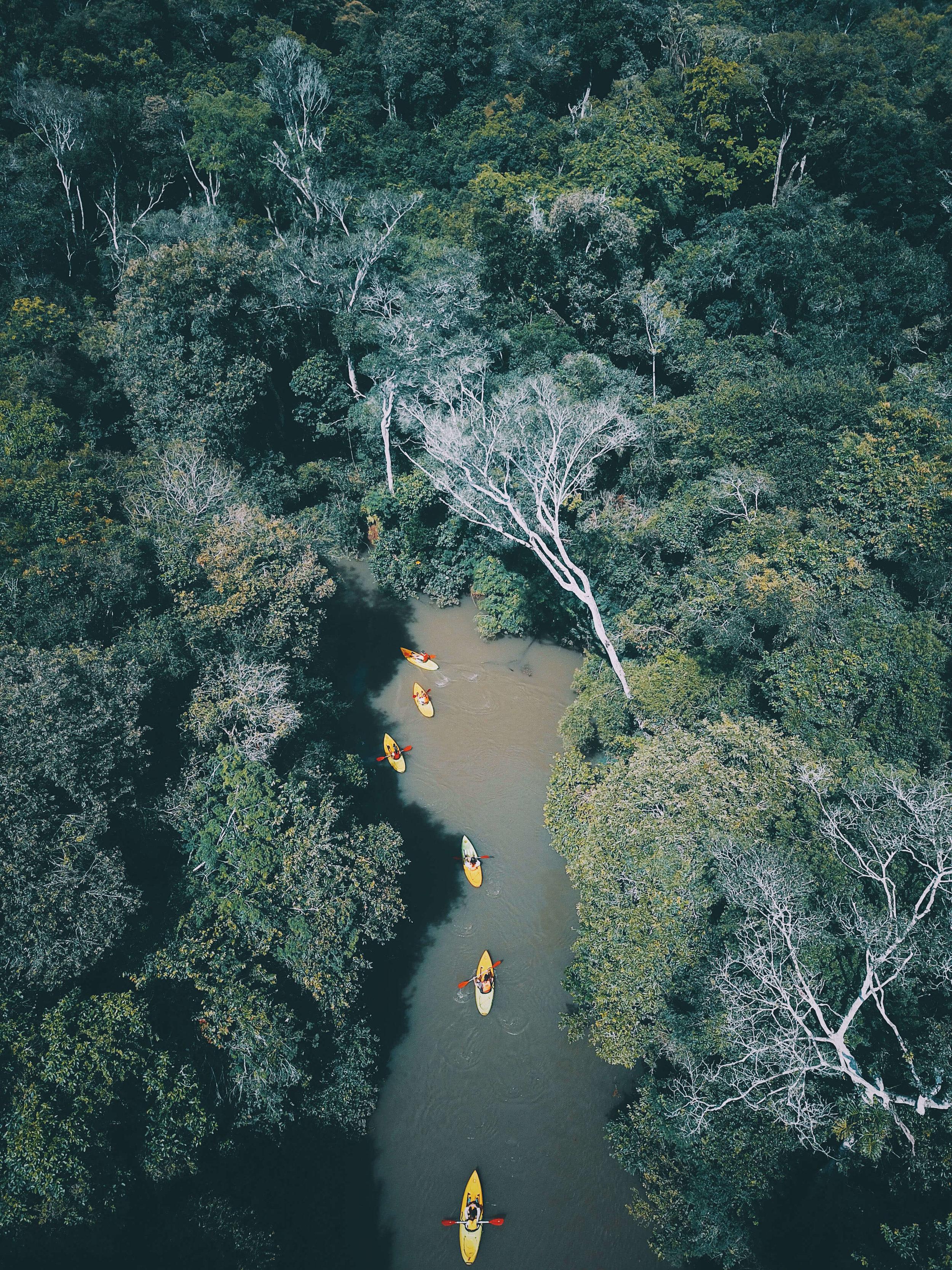 Excursions - Kayak aerial Yacui - Awasi Iguazu.jpg