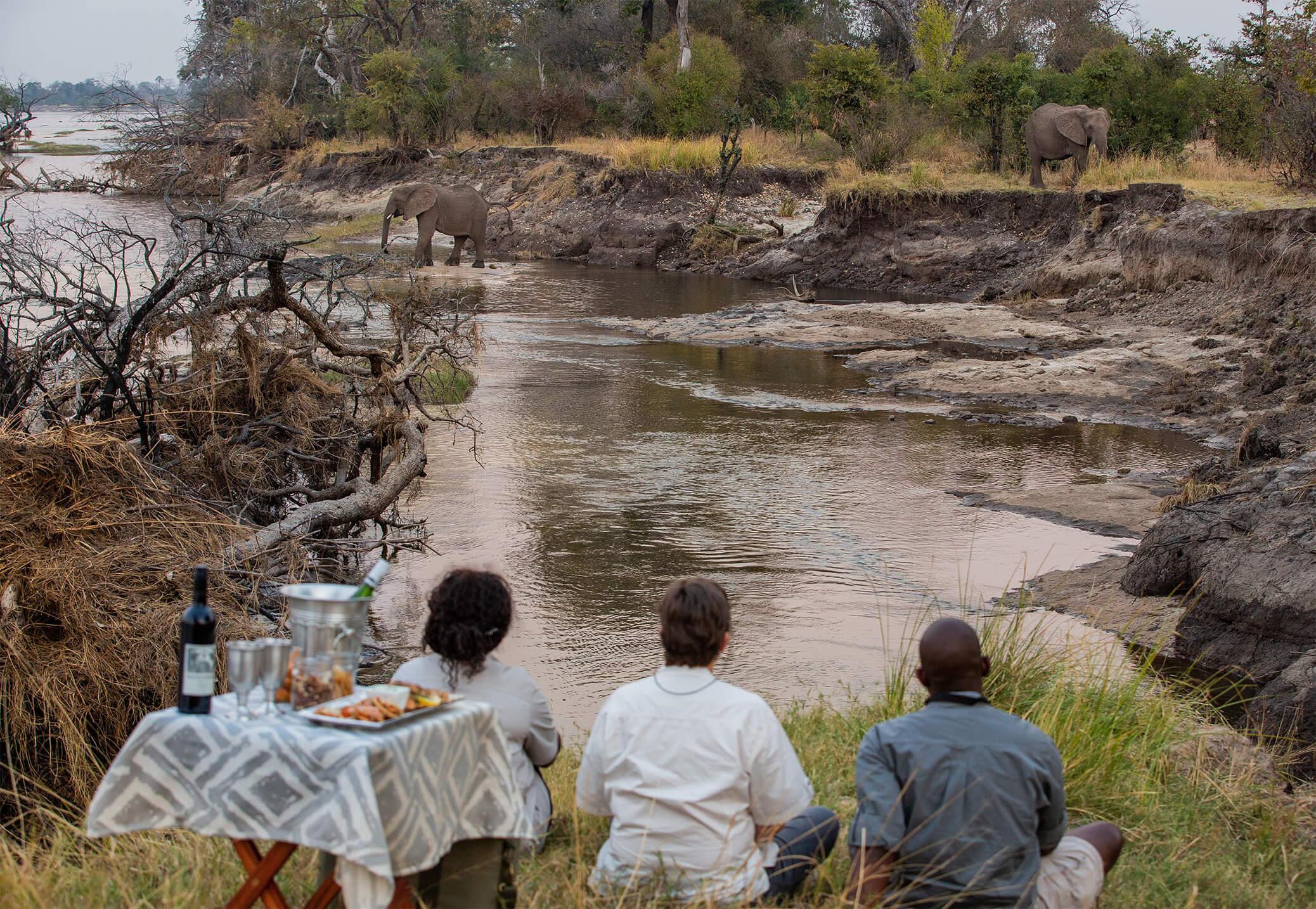 GPZimbabwe-MpalaJena-WildlifeSundowersWithElephants.jpg