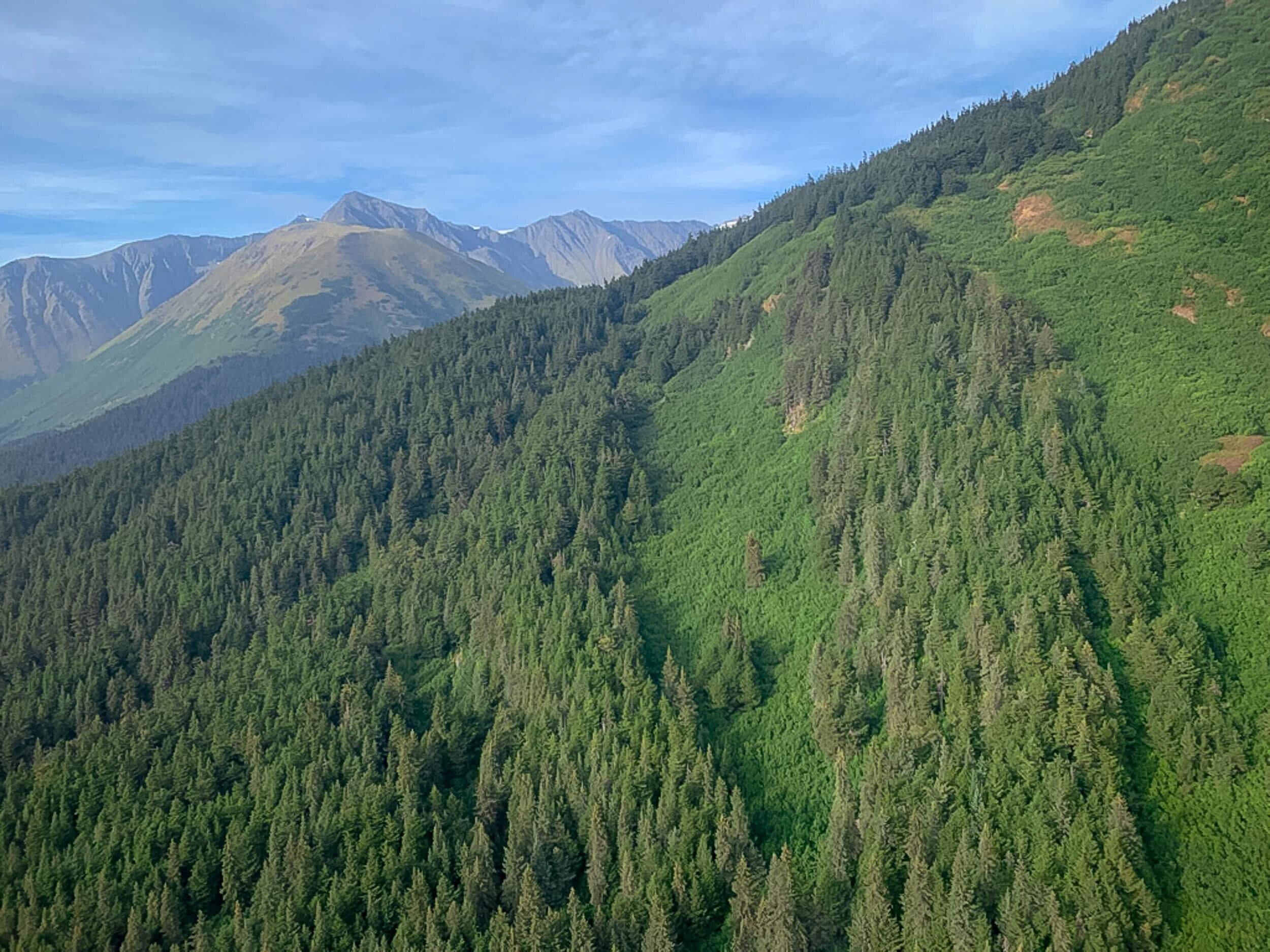Alaska Trip Report (19 of 23).jpg