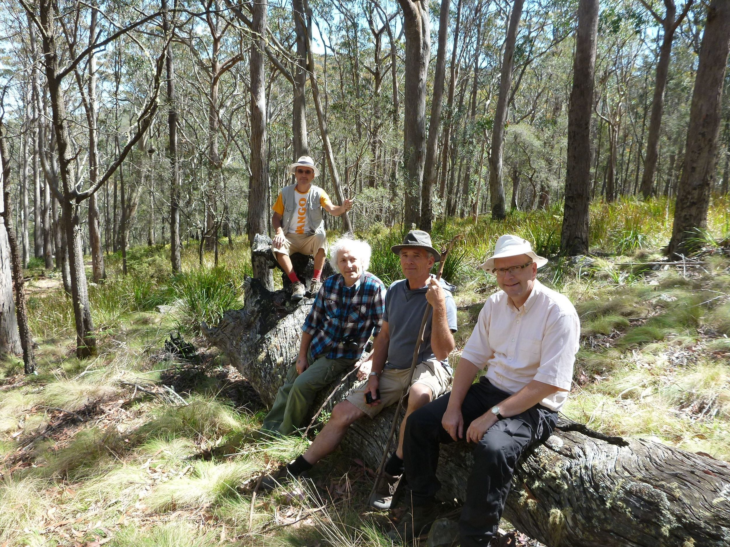 Environmentalists from germany, belgium and austria on a forest discovery retreat