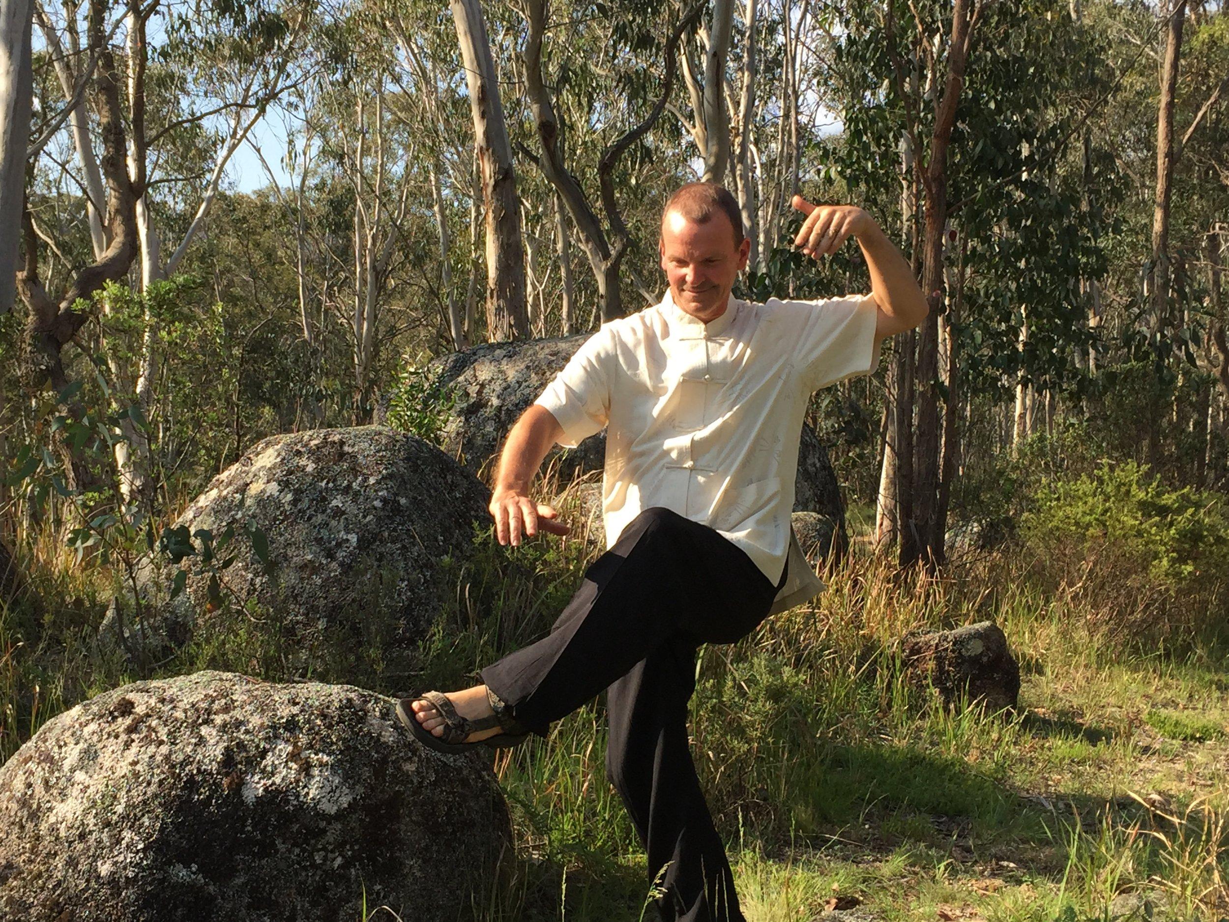 QiGong Master Warren conducts retreats here...