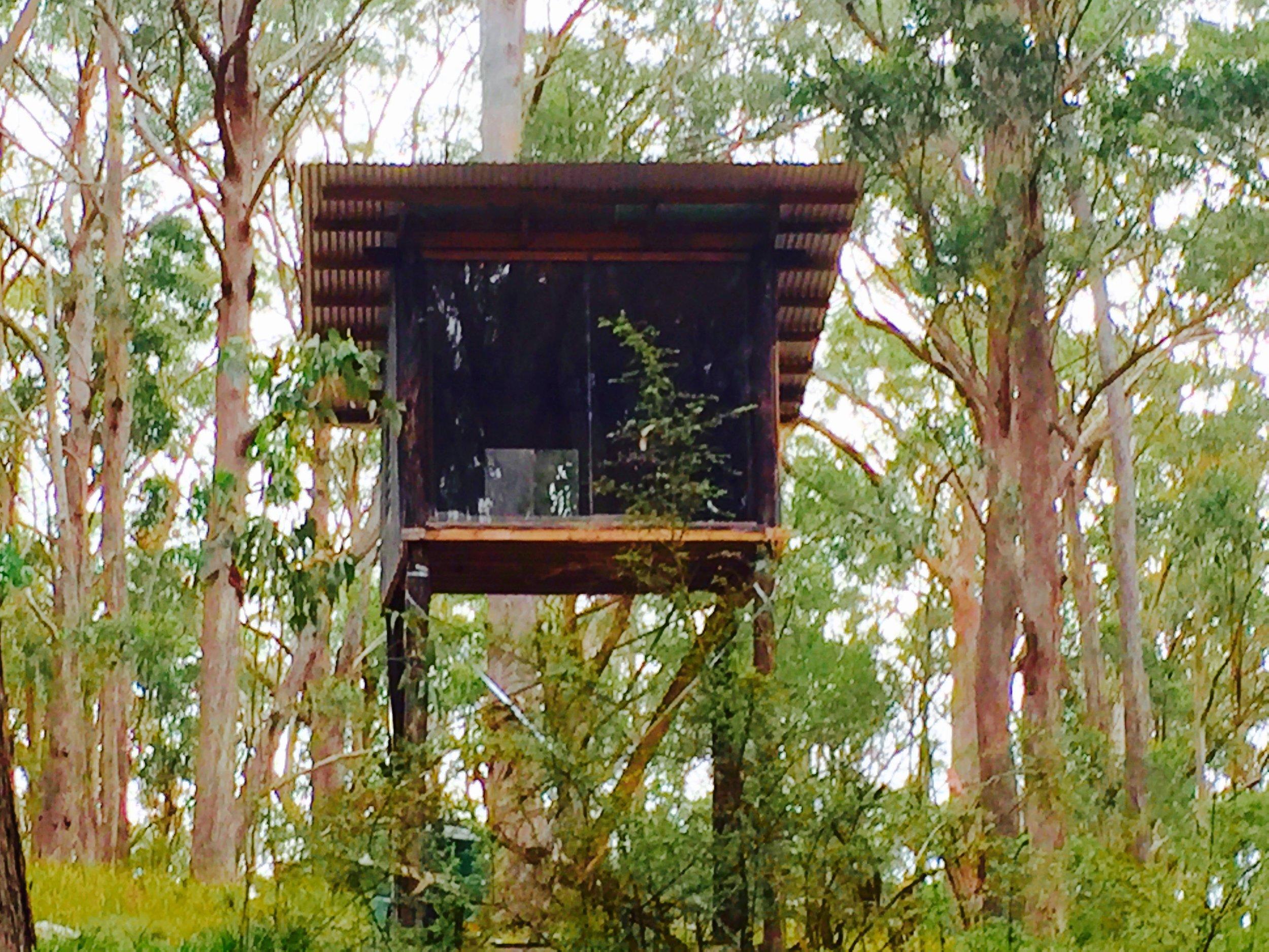 The Hermitage Tree House : a sannyassi's dream come true! Even has a stove..