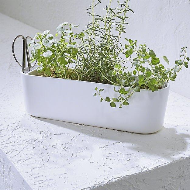 herb planter.jpeg