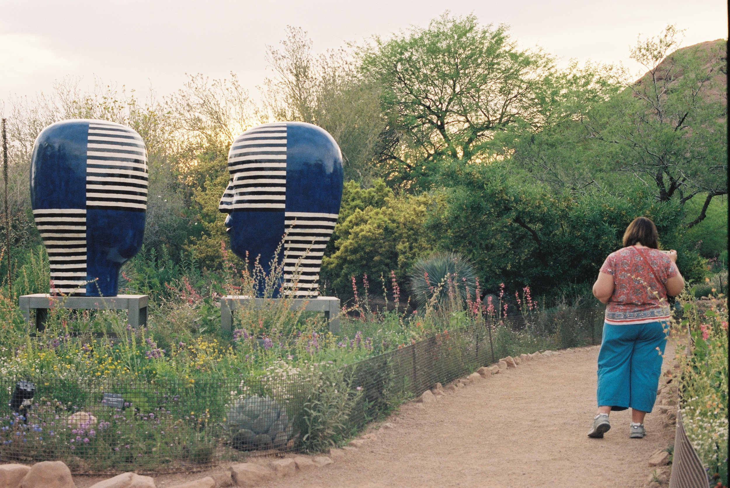 Sculpture at Desert Botanical Garden, Phoenix