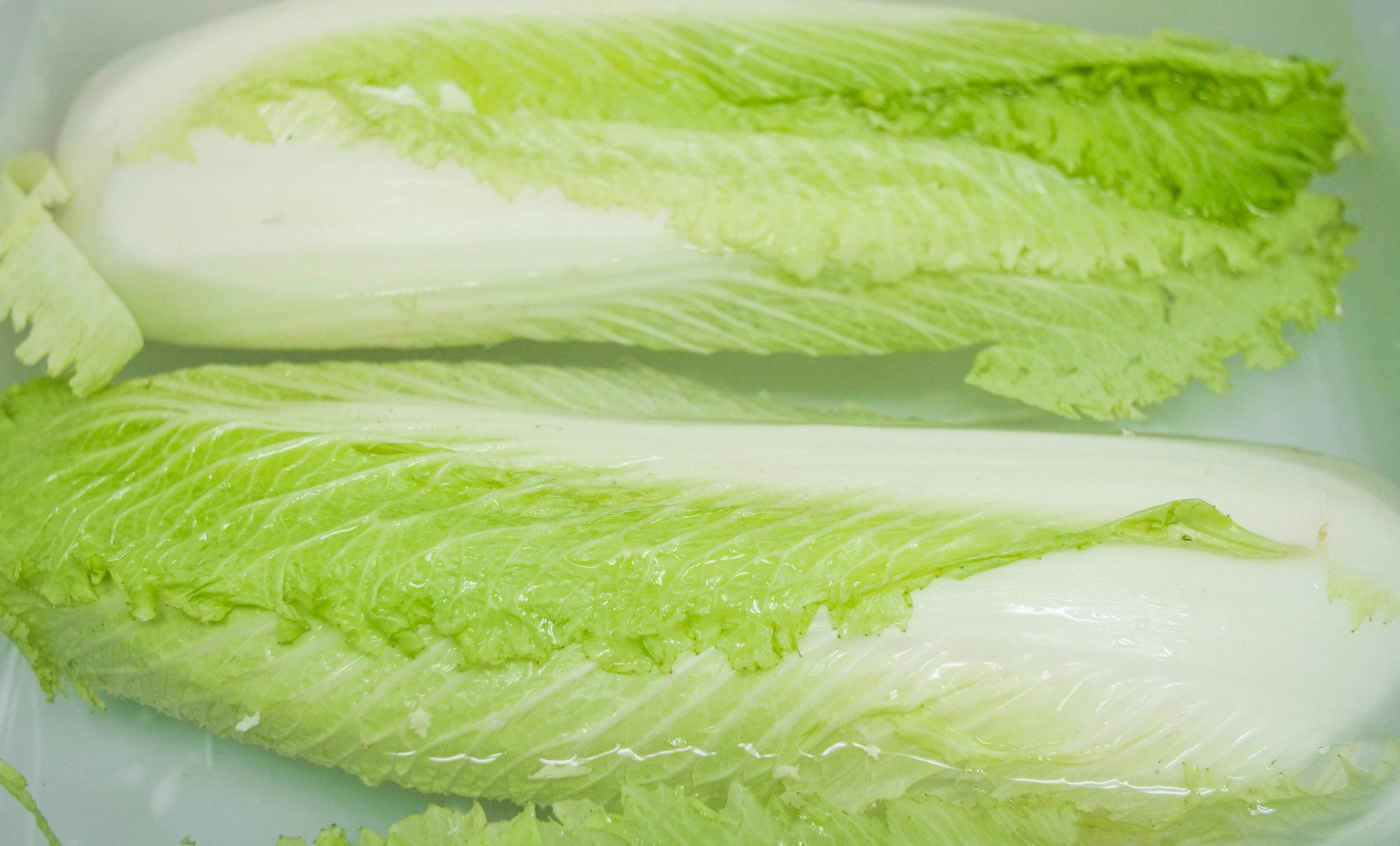 Kimchi-4.jpg