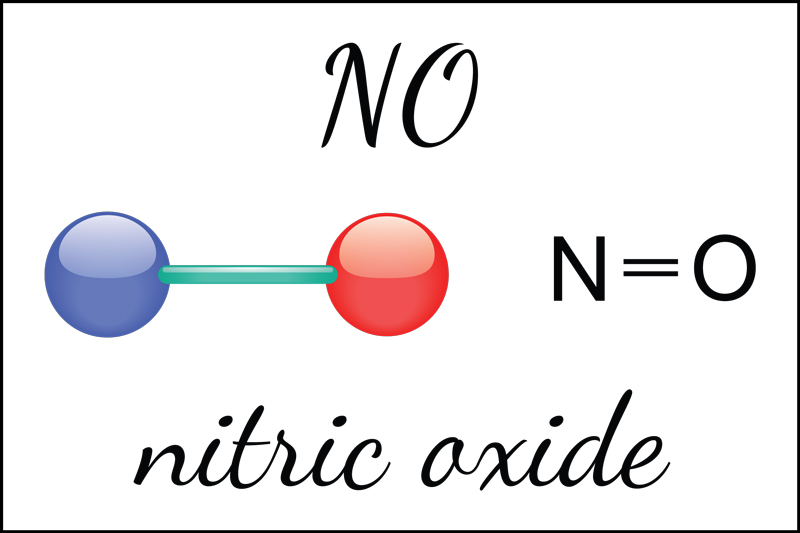Nitric oxide: the miracle molecule.