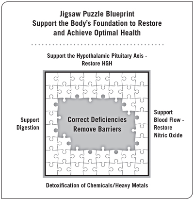 To restore and achieve optimal health, Support the body's foundation.  Click to enlarge jigsaw puzzle blueprint .
