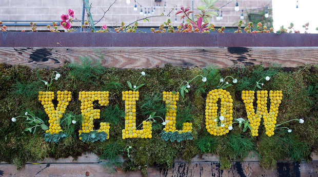 Yellow Conference 2014_1.jpg