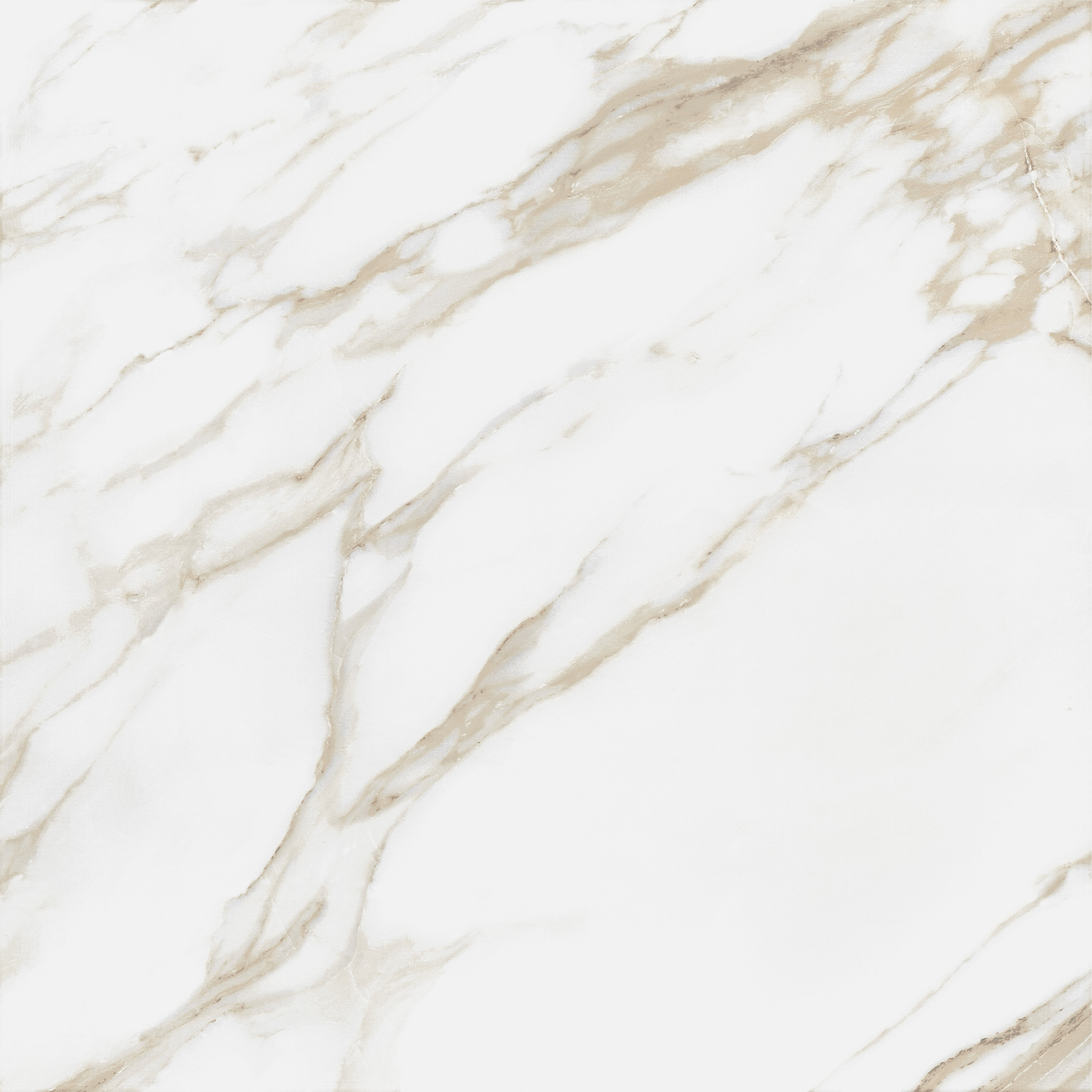 Calacatta Blanco · 60x60