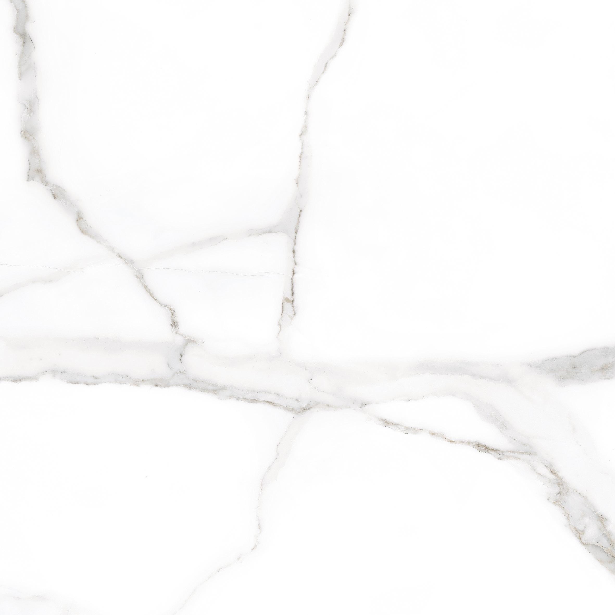 Calacatta Snow White · 60x60