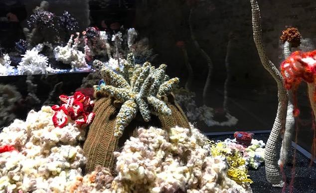Christine y Margaret Wertheim, Crochet Coral Reef. (detalle)