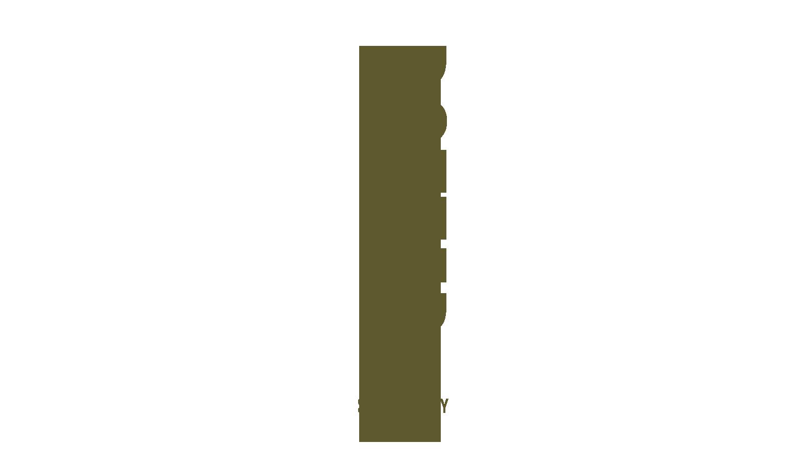 dotter-brändi-strategia-design-gold-PNG22.jpg
