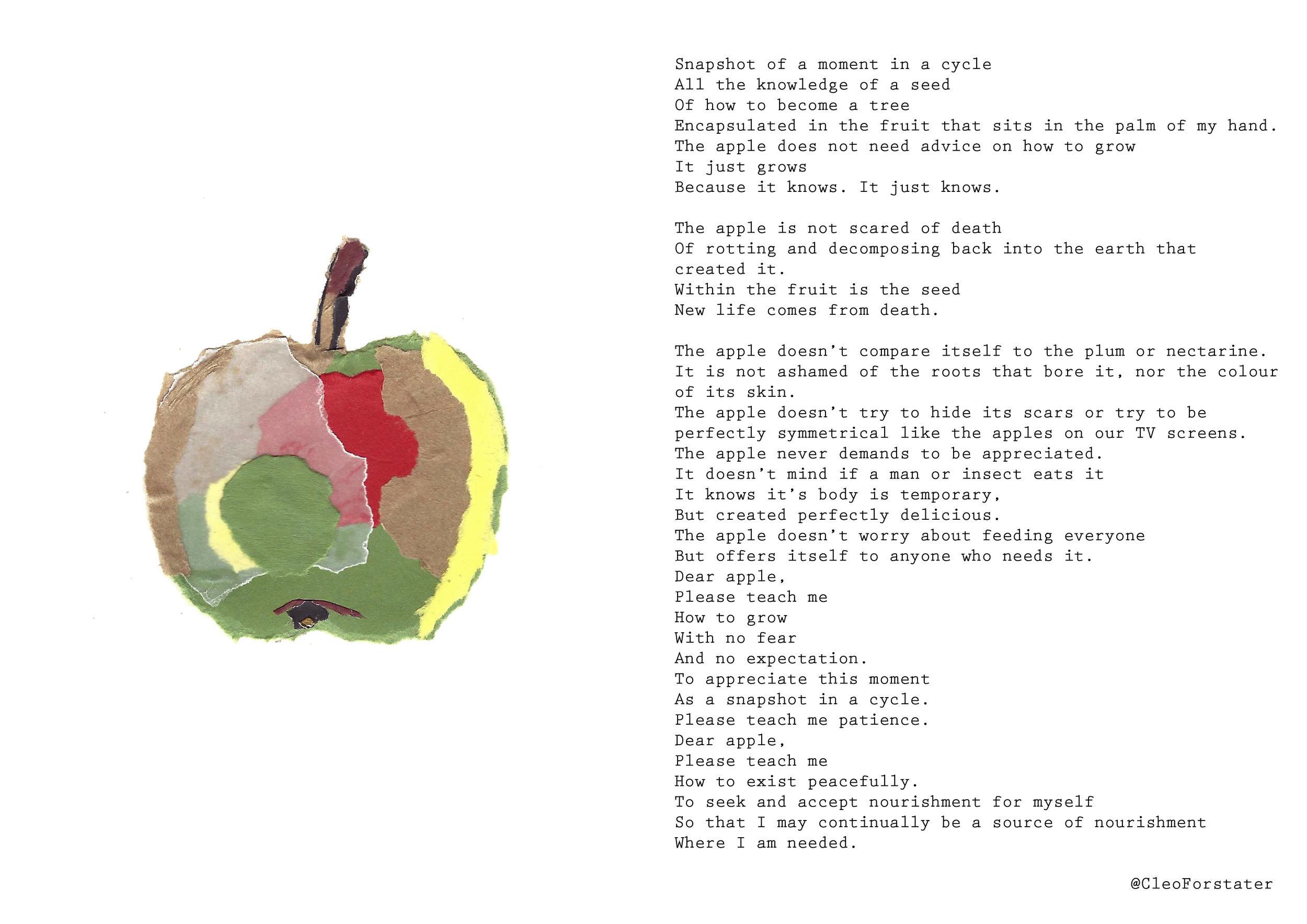 9 apple.jpg