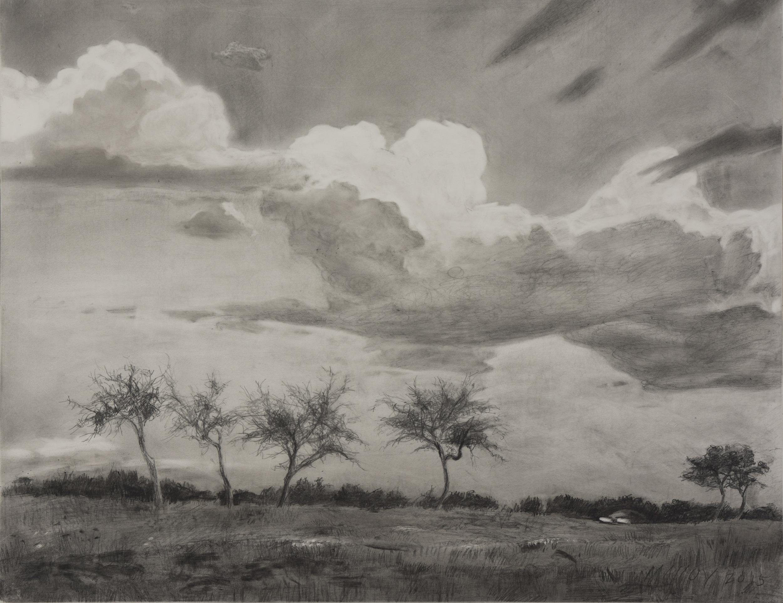 "Mobile Landscape Study 1.  Graphite on claybord 11"" x 14"" 2015"