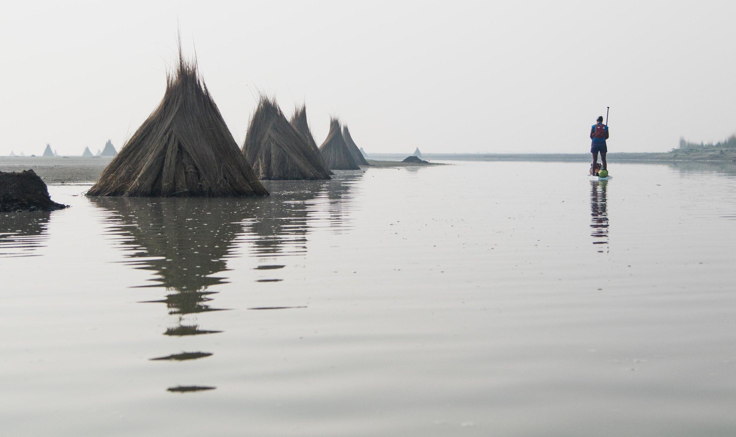 Ganges-24.jpg
