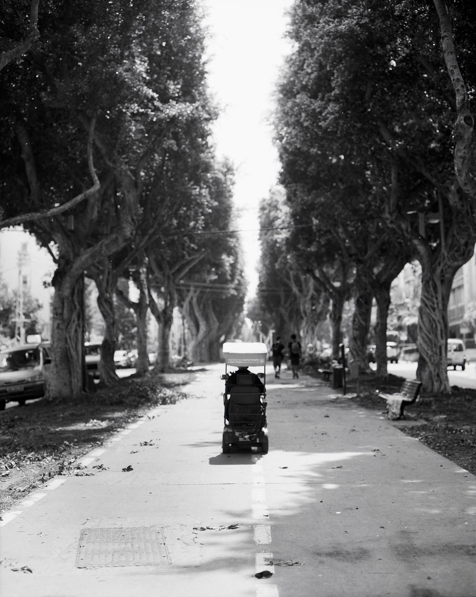 stroll on the boulevard.jpg