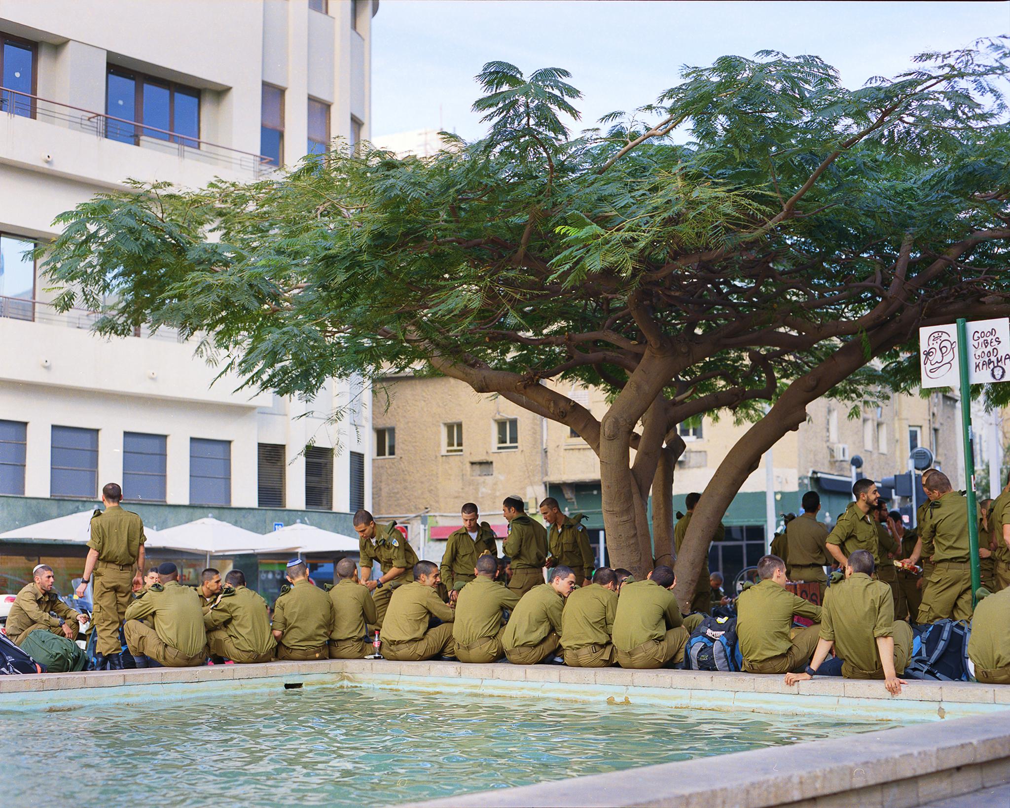 soldiers tree behind.jpg