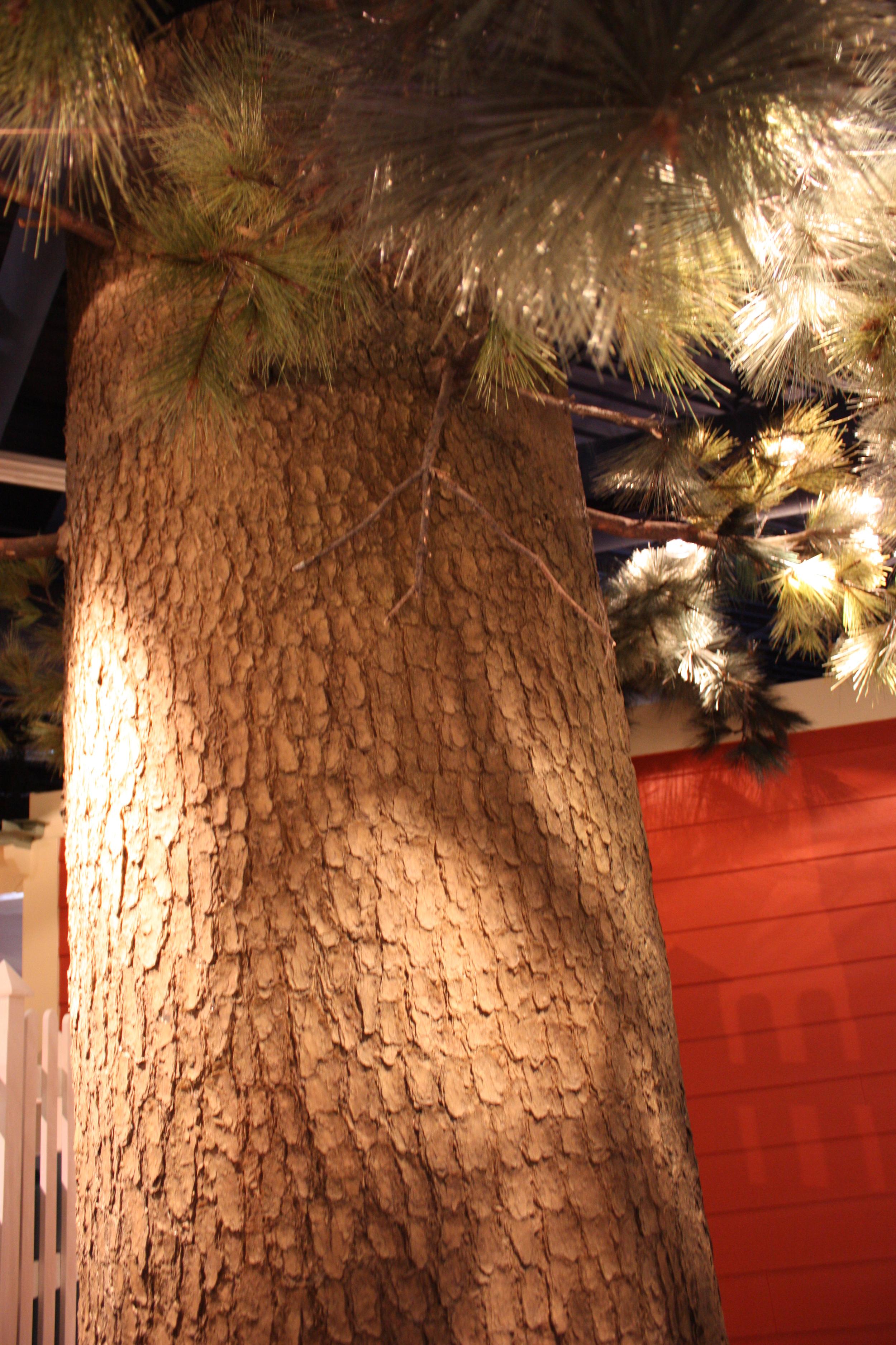 w.pg.tree repros.pine.JPG