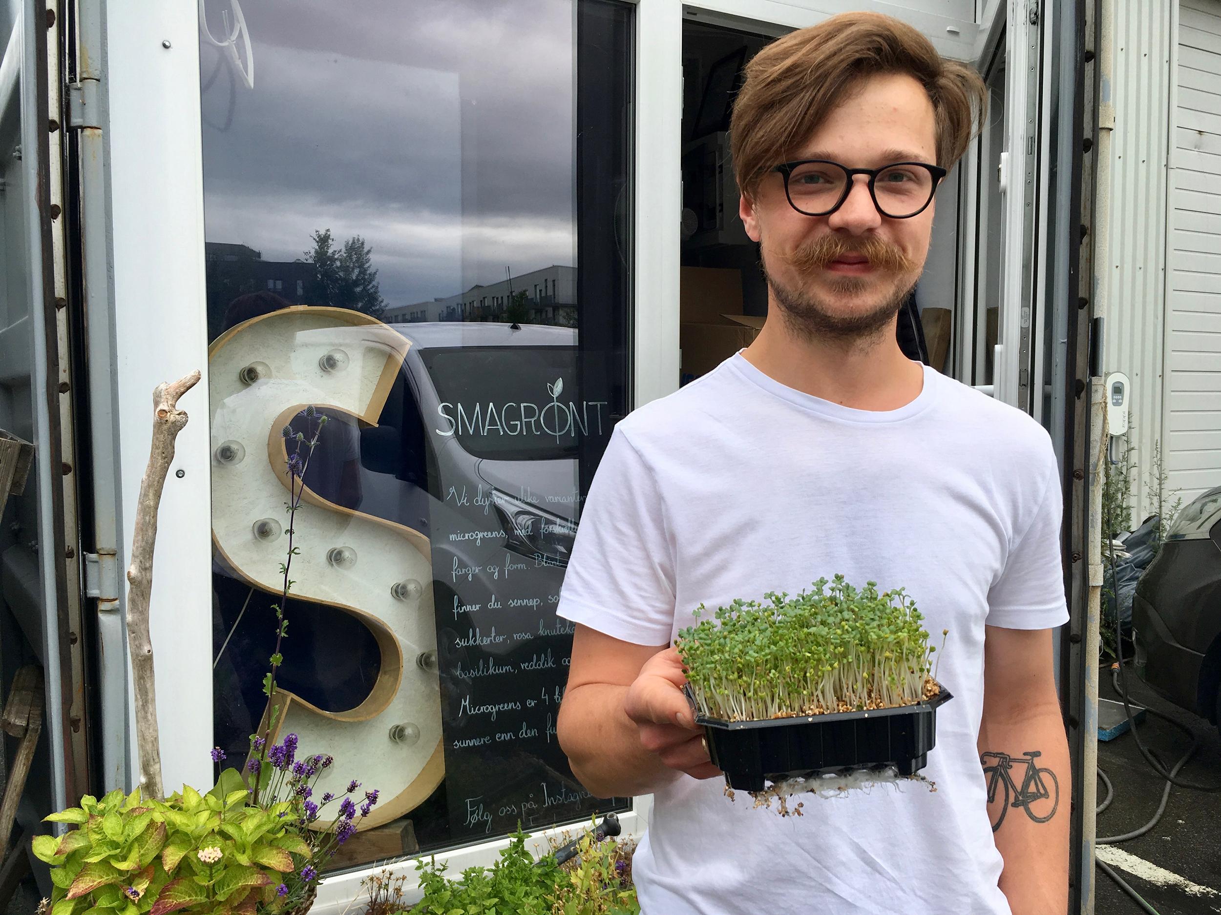 Kamil med en av årets mest populære grønnsaker i hånden: Sennepsplanten.