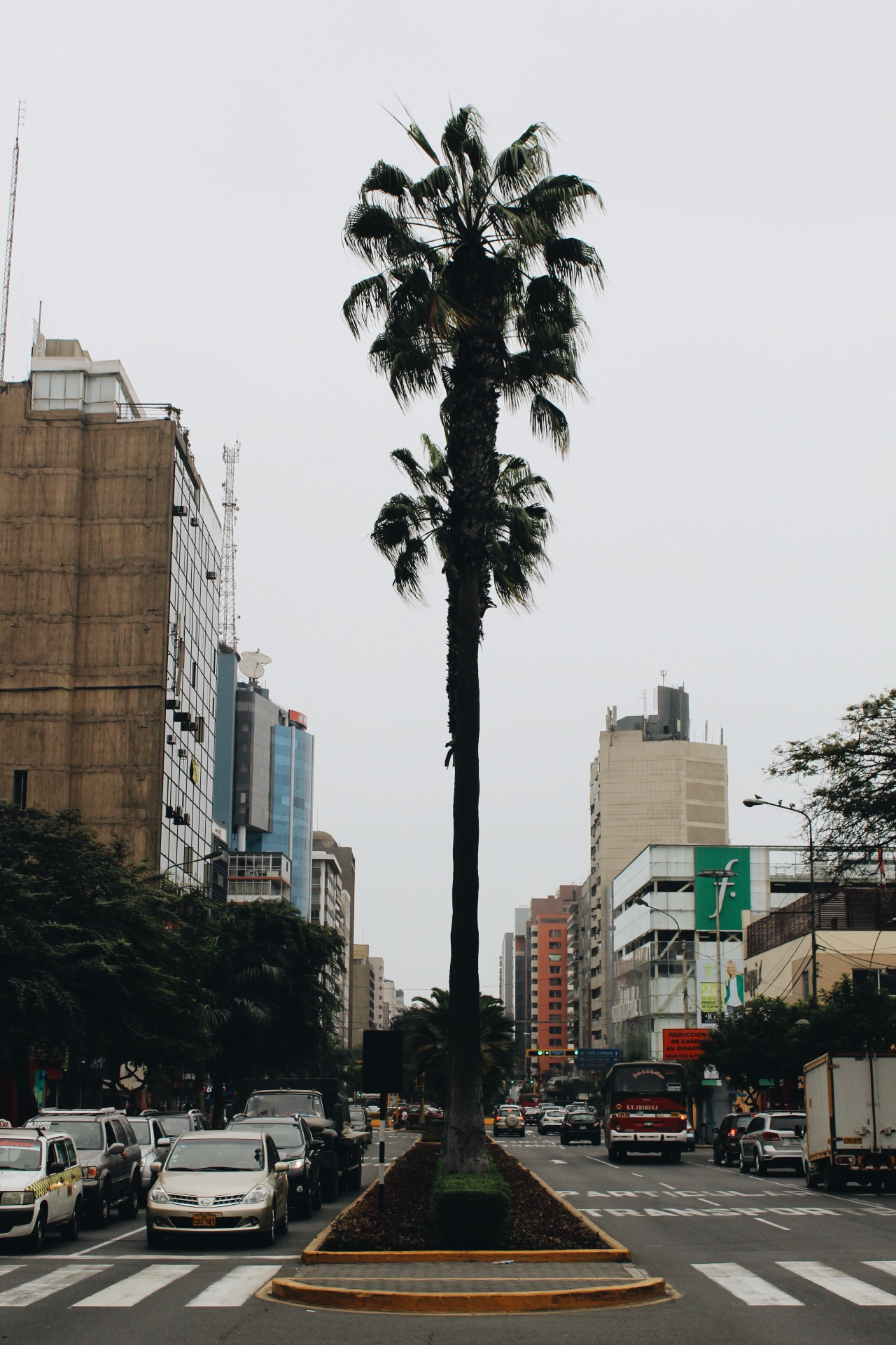 {the coastal city of Lima is actually a desert that has to import all their water for plants}