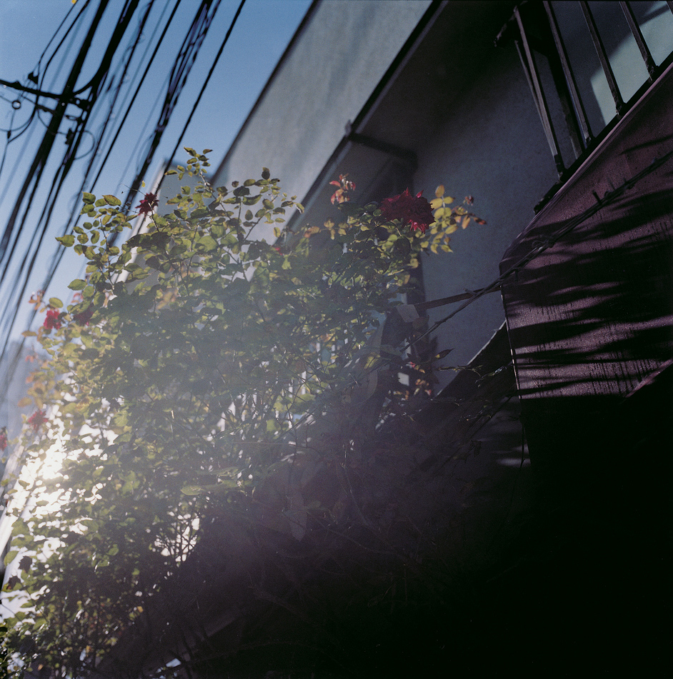 16_shimokita_0038.jpg