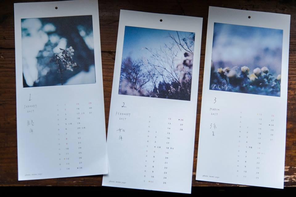 一月:立ち枯れたアジサイ 二月:立ち枯れたススキとセイタカアワダチソウ 三月:フクジュソウ