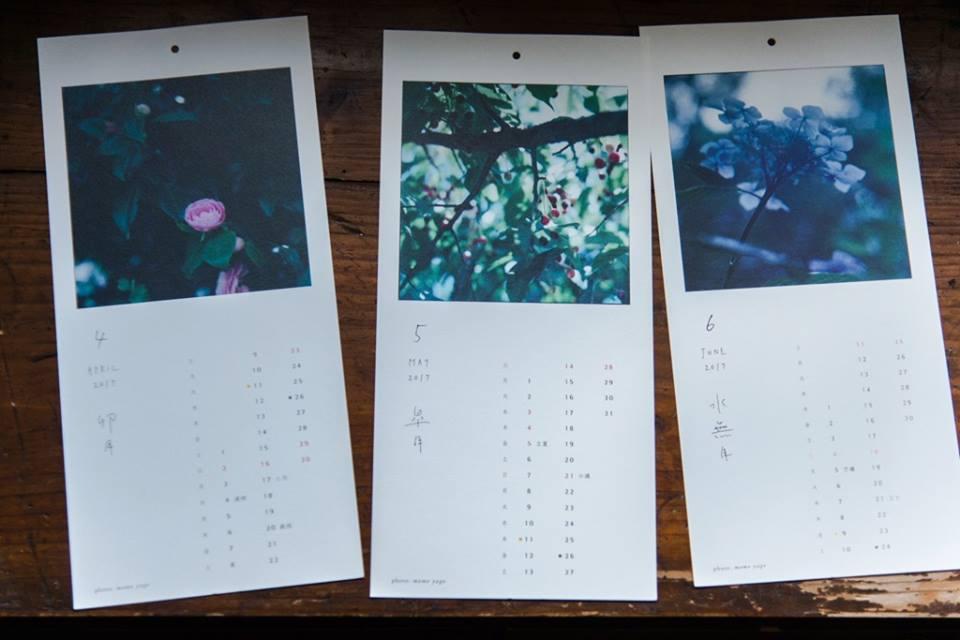 四月:ツバキ 五月:ヤマザクラの実 六月:アジサイ