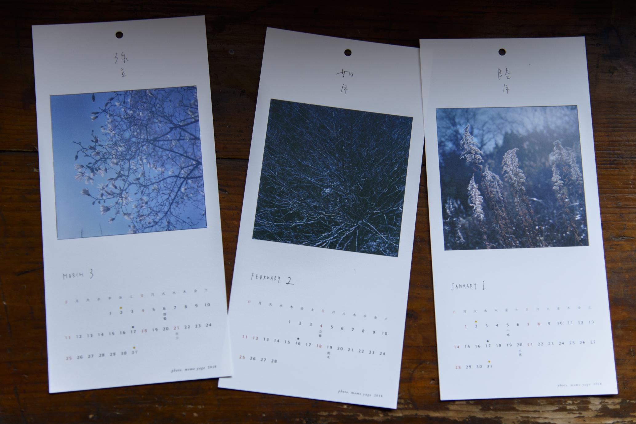 睦月 / 一月 セイタカアワダチソウ、如月 / 二月 芽吹き前の木、弥生 / 三月 コブシ