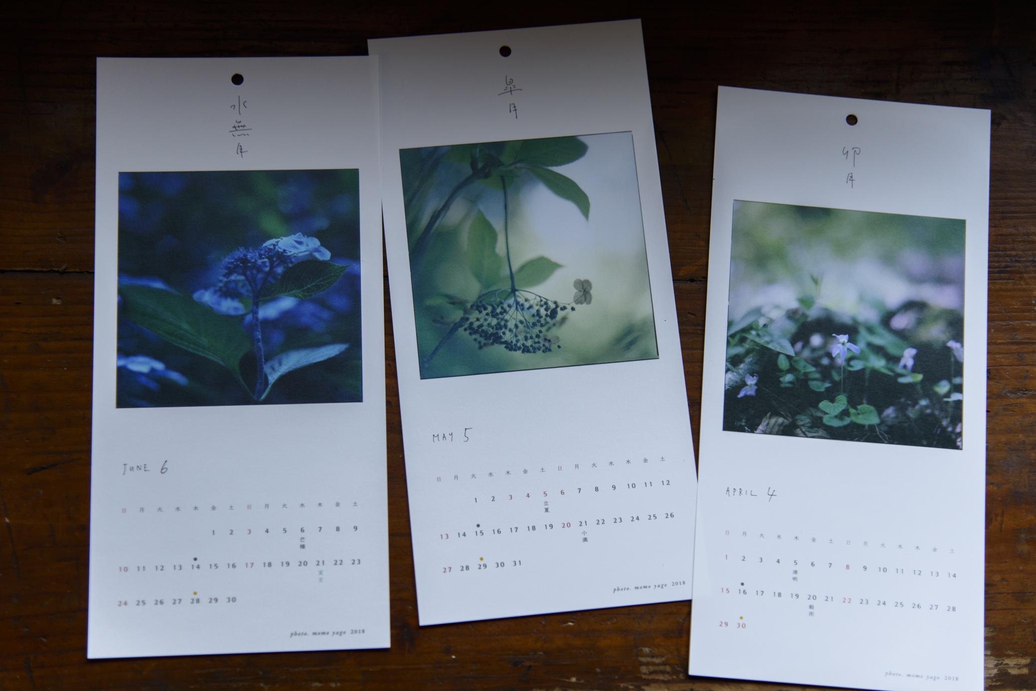 卯月 / 四月 スミレ、皐月 / 五月 枯れたアジサイ、水無月 / 六月 アジサイ
