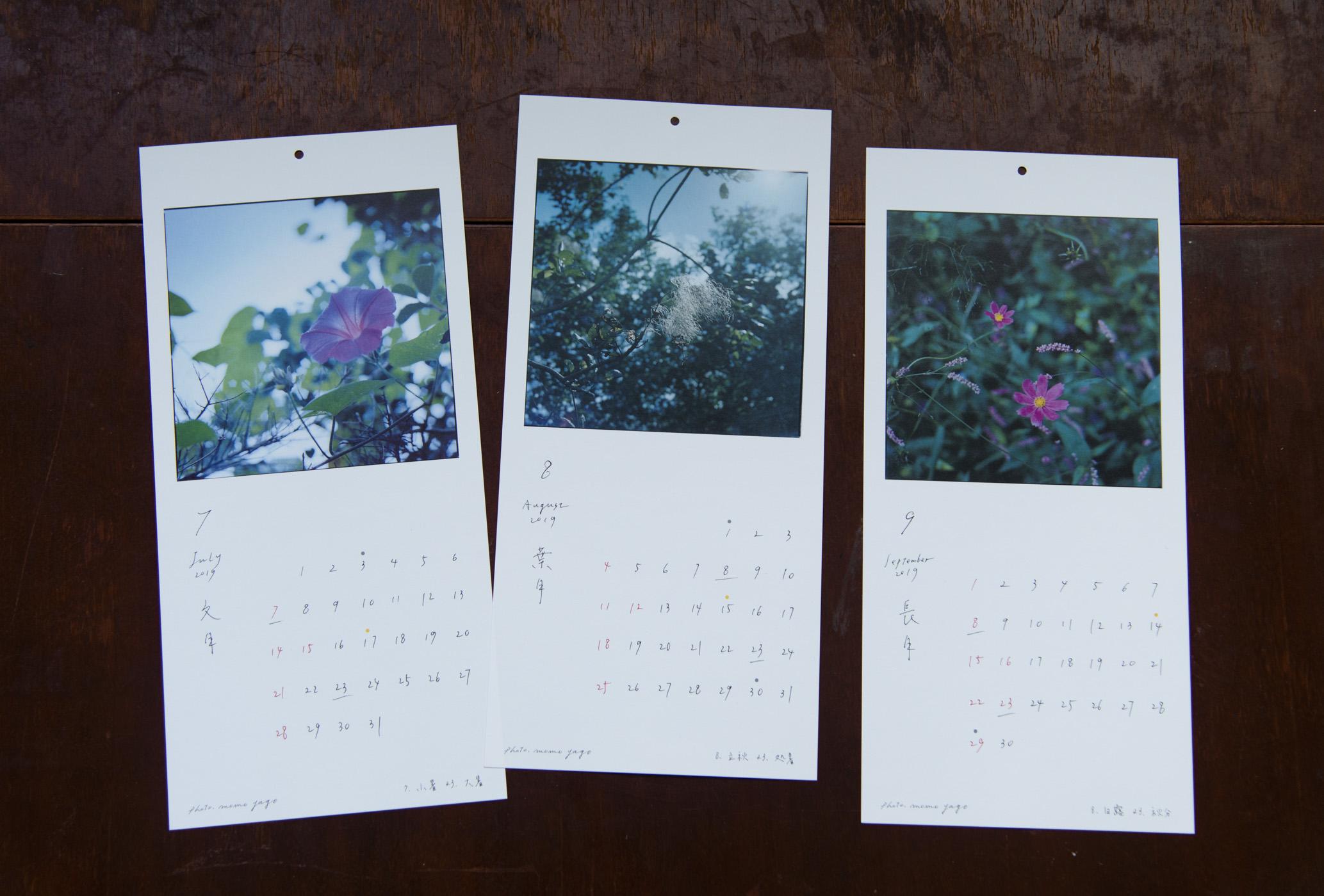 七月:アサガオ 八月:スモークツリー 九月:コスモスとイヌタデ