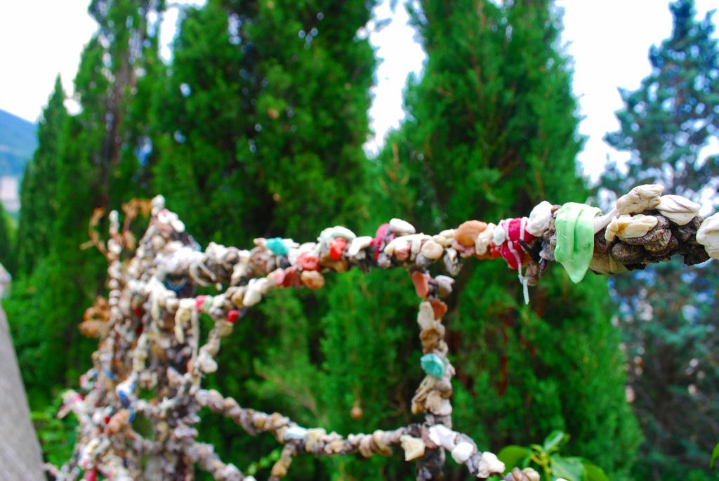 Gum fence in Siena.jpg