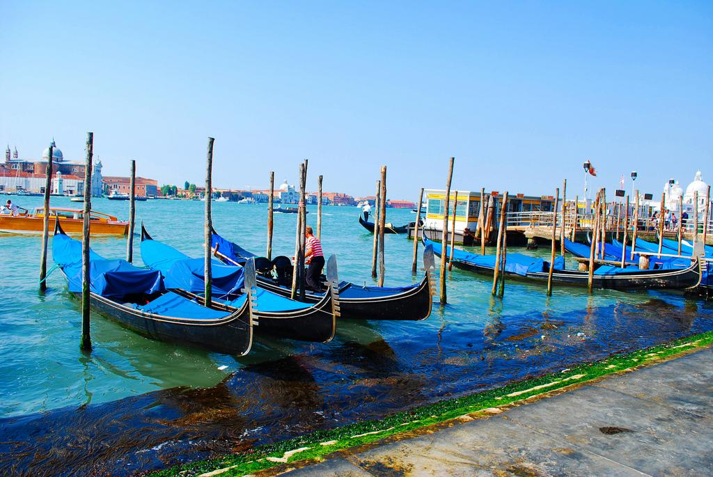 Venice is sinking.jpg