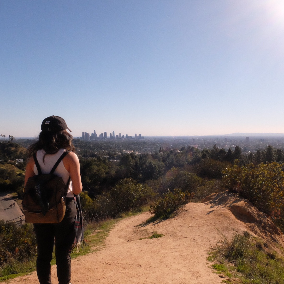 Hogback Trail to Mt. Hollywood Summit