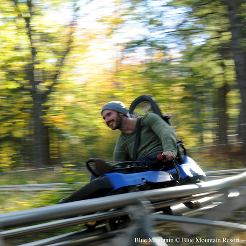 Mountain Coaster!
