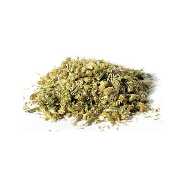 yarrow-flower-dried-herb+(1).jpg