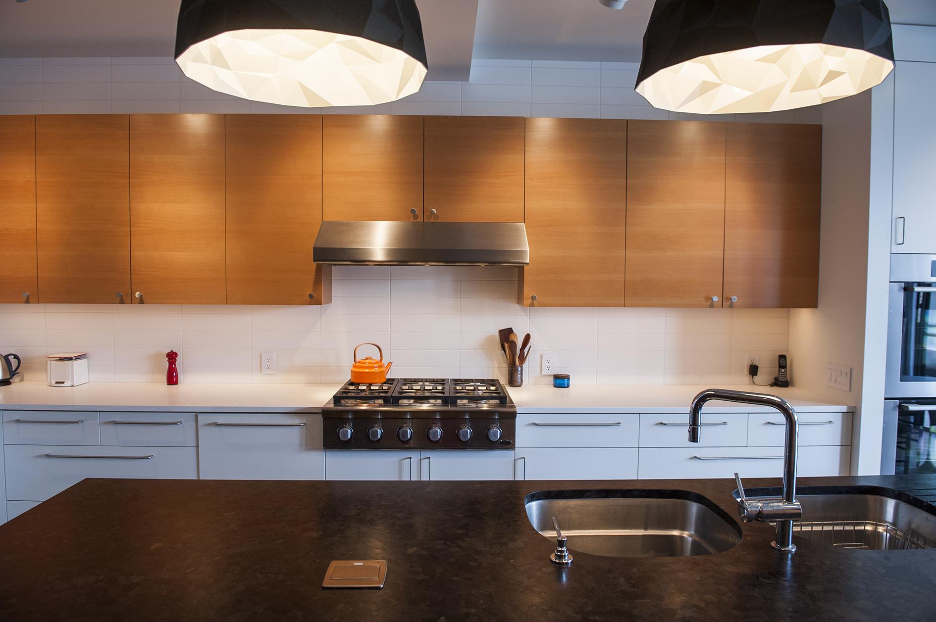 Portland Contemporary Remodel Kitchen
