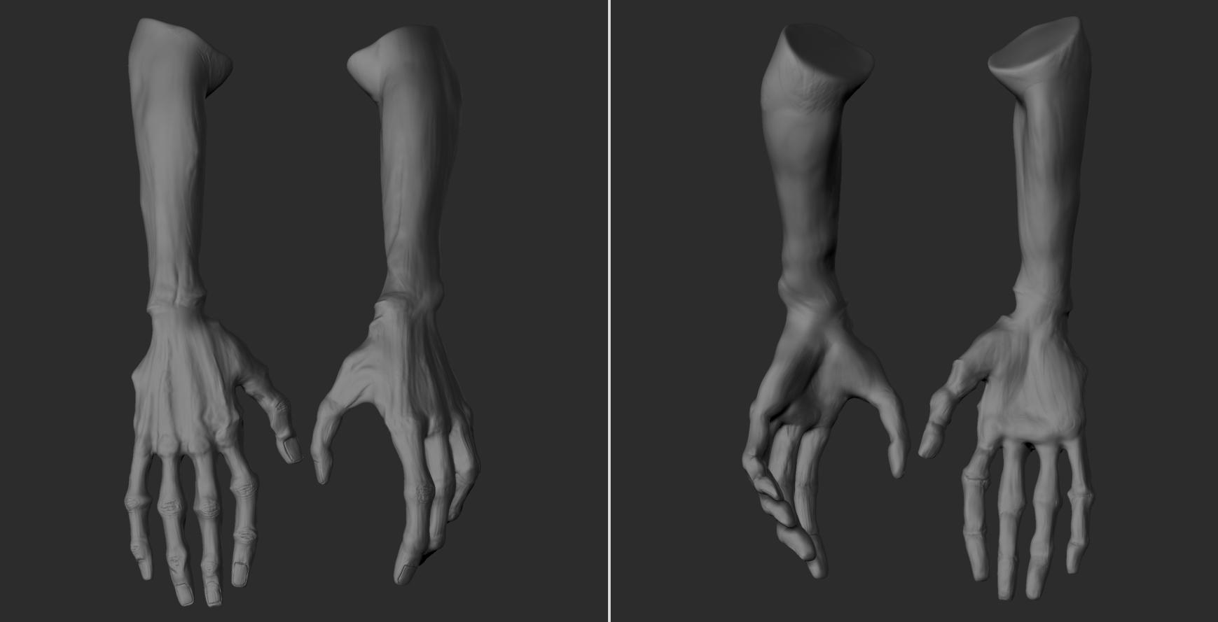 Egn_Hands_B_v03.jpg