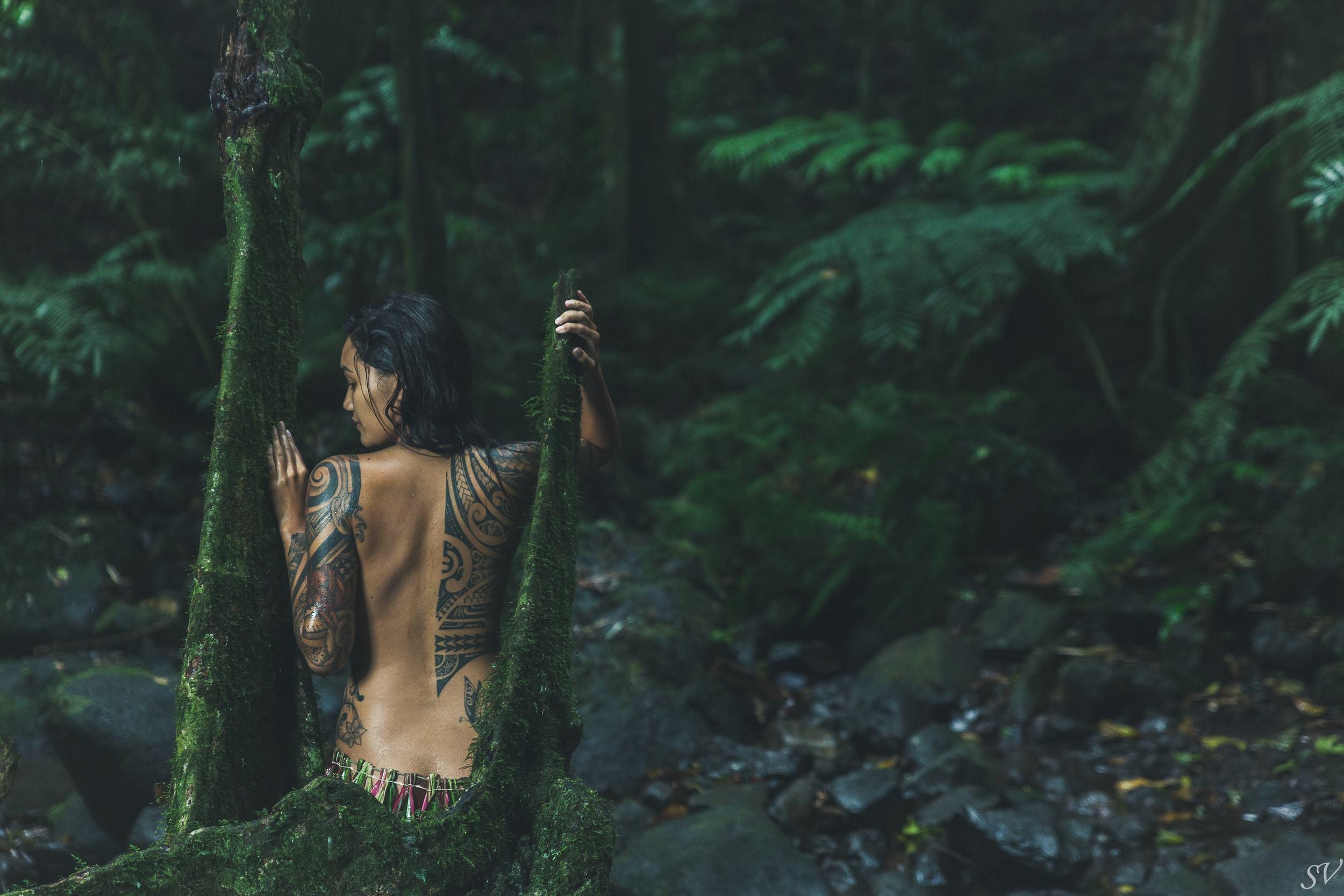 Into the stump