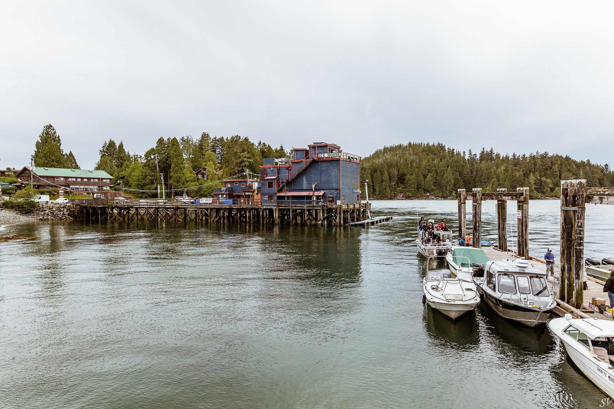 vancouver island-23.jpg