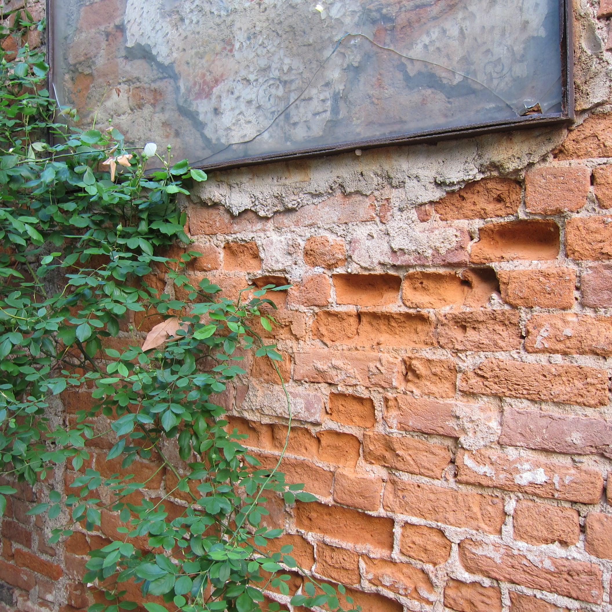web brick cilla .jpg