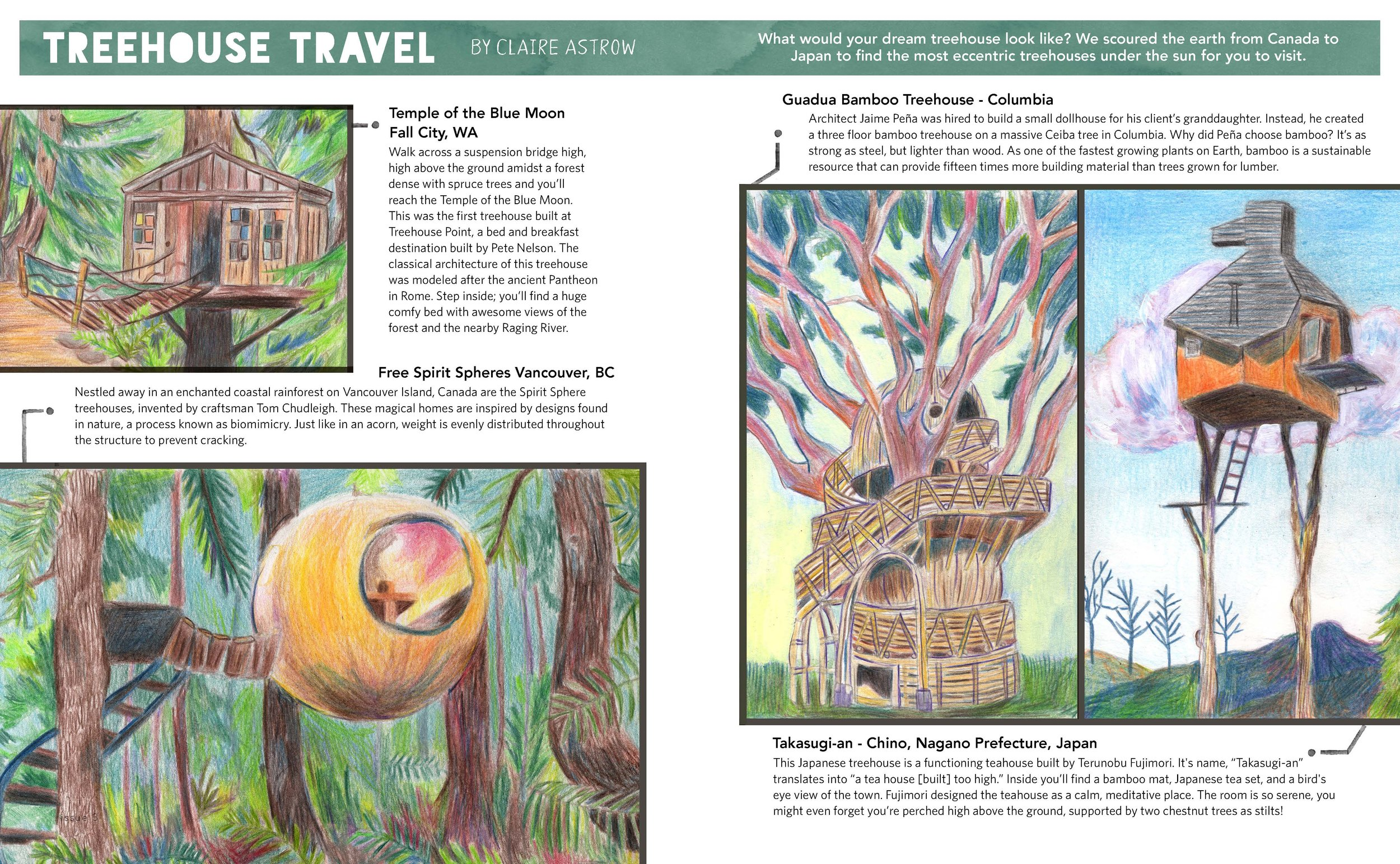 Tree house Travel featured in ILLUSTORIA Magazine Issue #3. 2017.