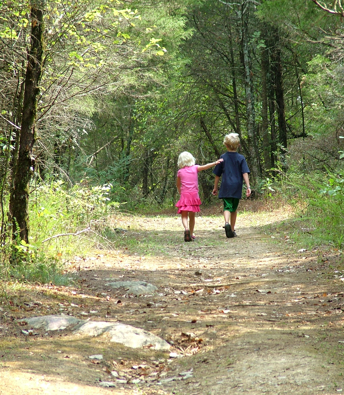 brother-and-sister-walk-in-woods-1-1431880.jpg