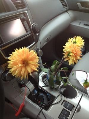 flowercar.jpg
