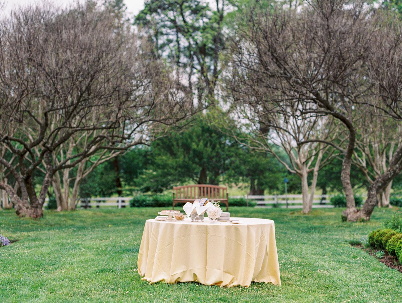 Tuckahoe_Plantation_Lynchburg_Richmond_ Virginia_Charlottesville_Wedding_Photographer-49.jpg