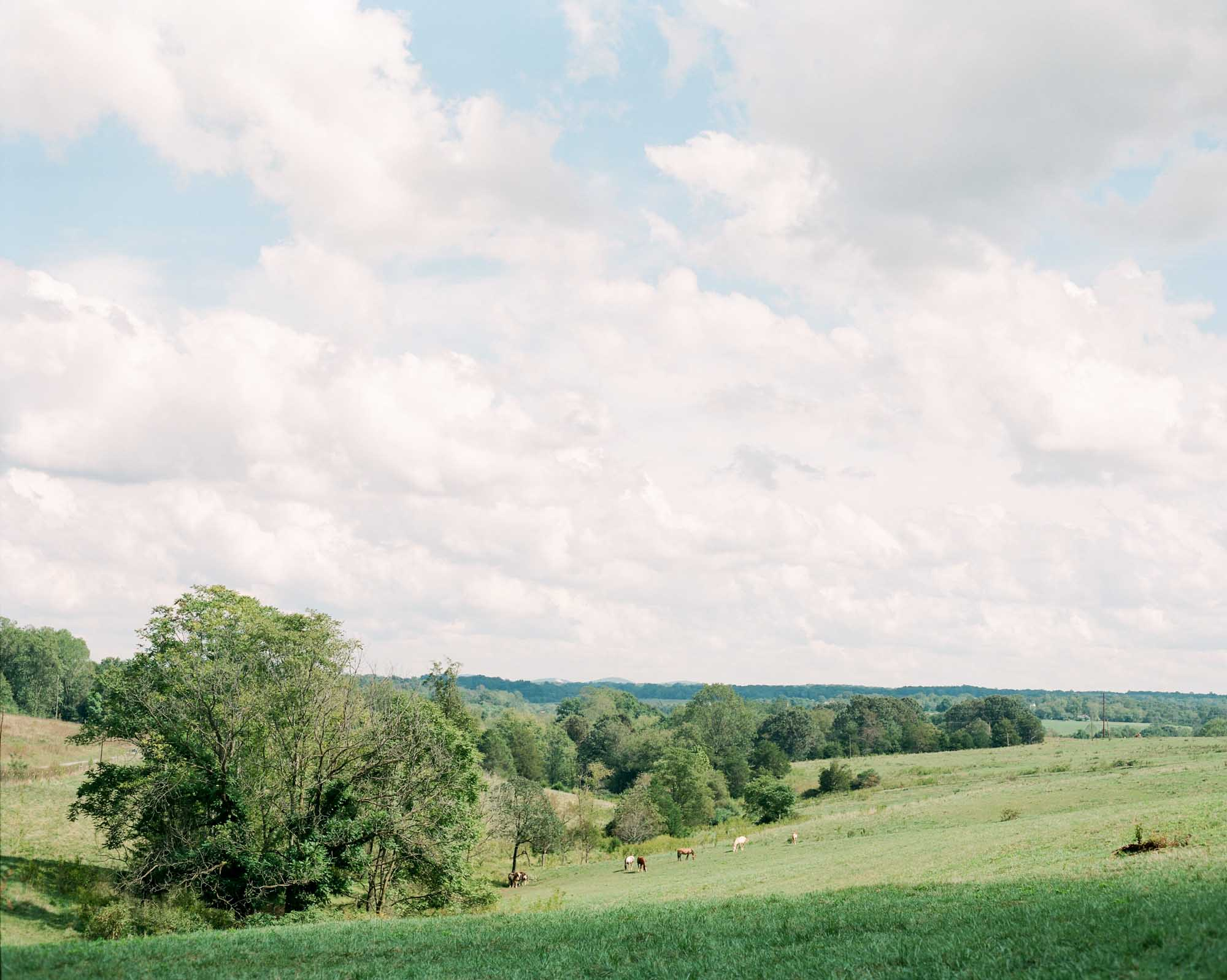west_manor_estate_lynchburg_charlottesville_richmond_film_wedding_photographer-3.jpg