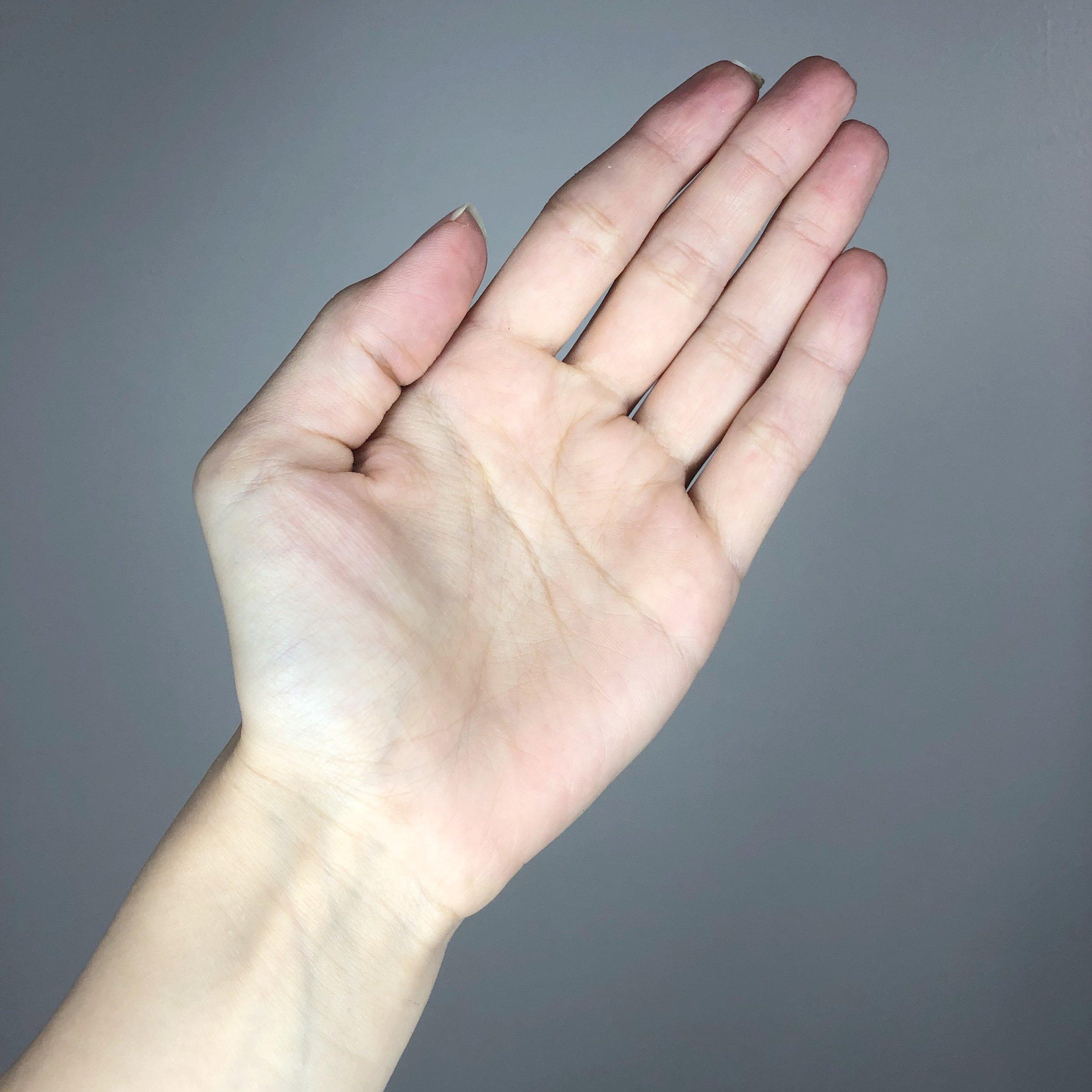 left-palm.JPG